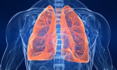 Какие бывают заболевания органов дыхания и как их лечить?