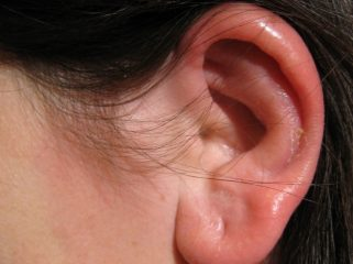 Ушной клещ у человека: симптомы заболевания и его лечение