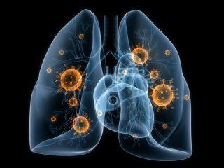 Грибковые заболевания легких