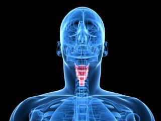 Симптомы и лечение рака гортани