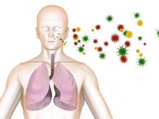 Пути и механизмы передачи туберкулеза