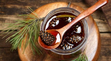 Рецепт варенья из сосновых почек