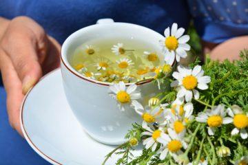Ромашковый чай ребенку при простуде
