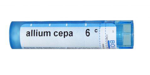 Гомеопатия Аллиум цепа (Аllium cepa): показания к применению