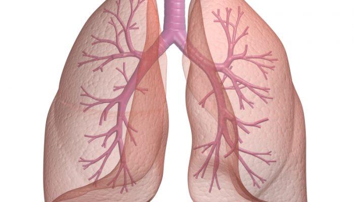 Тренировка лёгких