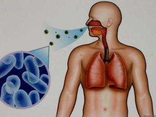 Что является источником туберкулеза?