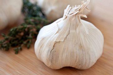 Как влияет на организм чеснок?