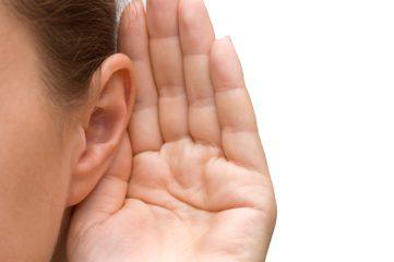 Особенности строения органов слуха в разном возрасте