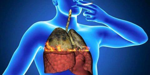Курящий и некурящий человек: отличия