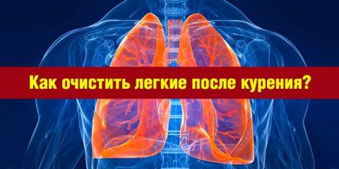 Полезные советы: как очистить легкие после курения? Лучшие методы