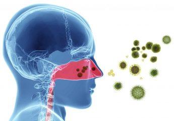 Вирус гриппа: при какой температуре погибает микроорганизм в теле и в окружающей среде?
