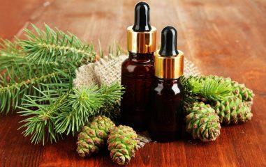 Лечебные свойства пихтового масла, а также способы применения и противопоказания
