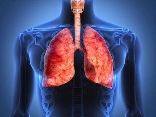 Что такое фиброз легких? Чем опасна болезнь и сколько времени с нею живут — отвечают эксперты