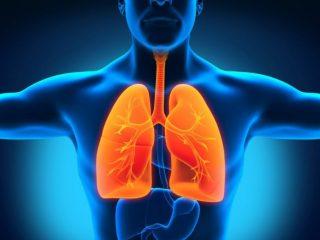 Как лечить туберкулез молоком и другими народными средствами?