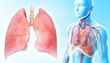 Симптомы и лечение плеврита легких, особенности различных клинических форм