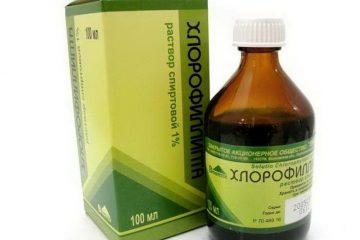Формы выпуска и инструкция по применению препарата Хлорофиллипт