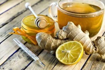 Имбирь при простуде: лучшие рецепты с медом и лимоном